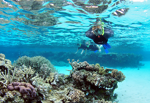 how to get better at snorkeling