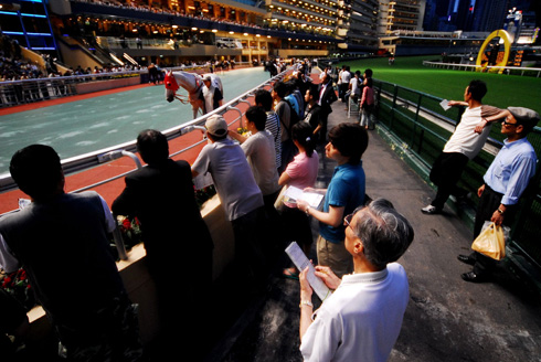horse races Hong Kong