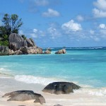 seychelles_beach_royal_honeymoon