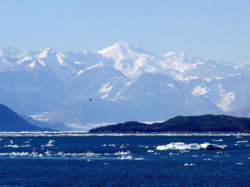 5 Things You Must Do When Visiting Alaska Travel Tweaks