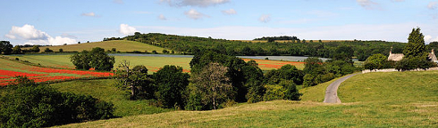 640px-Cotswolds_Panorama_Fields
