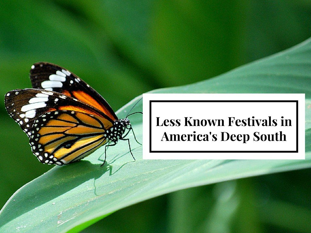 Deep South Festivals