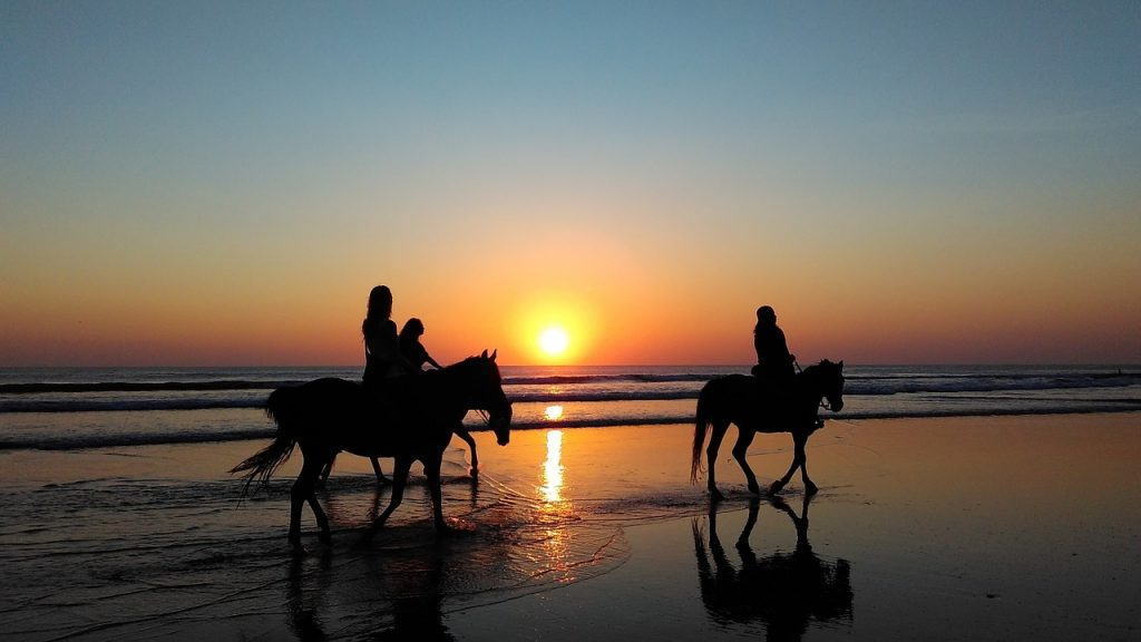Horseback Ride at Sunset