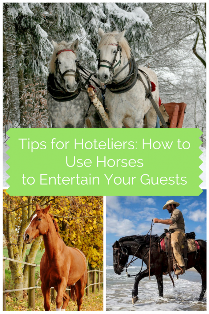 Tips for Hoteliers: How to Use Horses to Entertain Your Guests