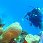 Top 5 Scuba Diving Destinations