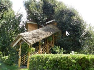 MANALI-TREE-HOUSES-COTTAGE-MANALI-