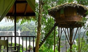 RAINFOREST-BOUTIQUE-TREE-HOUSE-RESORT-KERELA