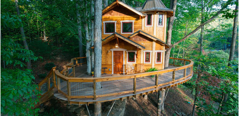5 Amazing Tree House Accommodations From Around The World